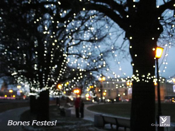 Grup La Pau us desitja Bon Nadal